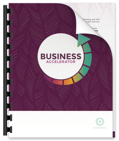 lbm-business-accelerator-promo-preview.png