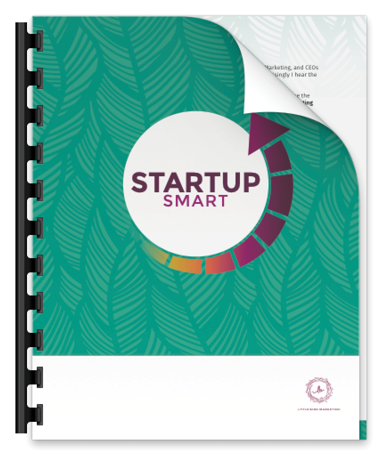 lbm-startup-smart-promo-preview-image.png